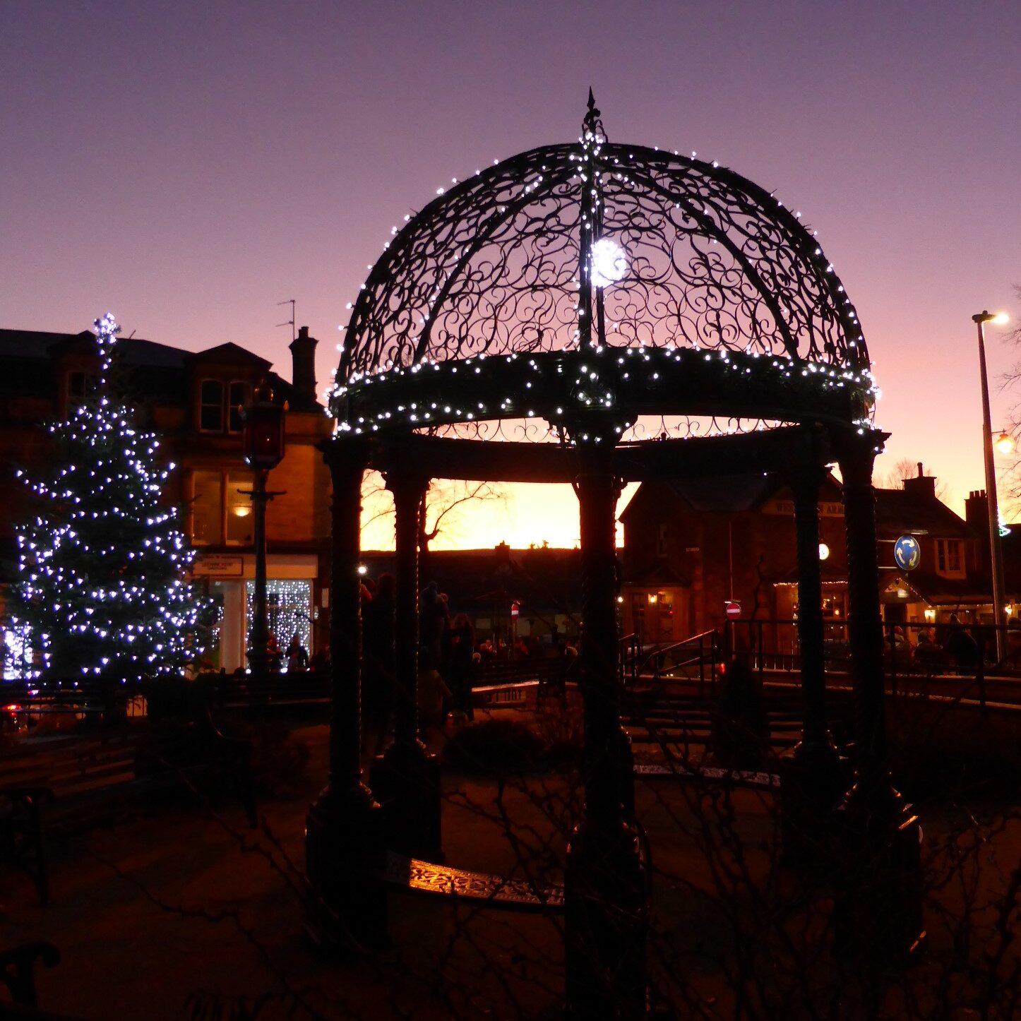Provost's Park xmas lights